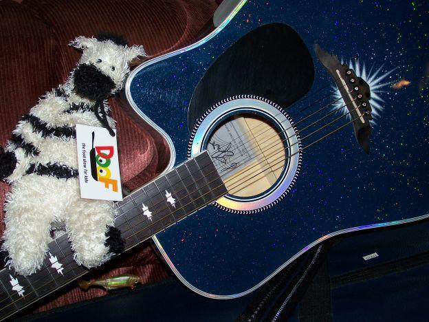 ZeBot Guitar