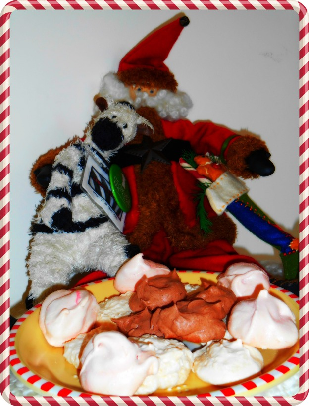 ZeBot & Santa with Cookies