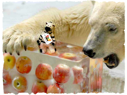 Apples, Polar Bear Style