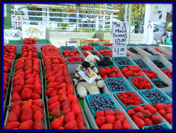 ZeBot Berries
