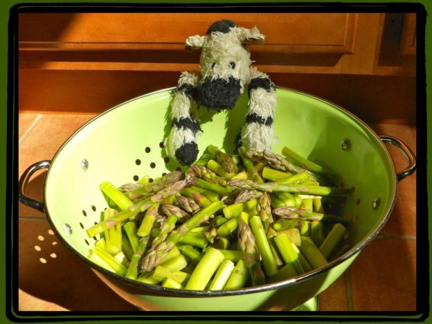 ZeBot Asparagus