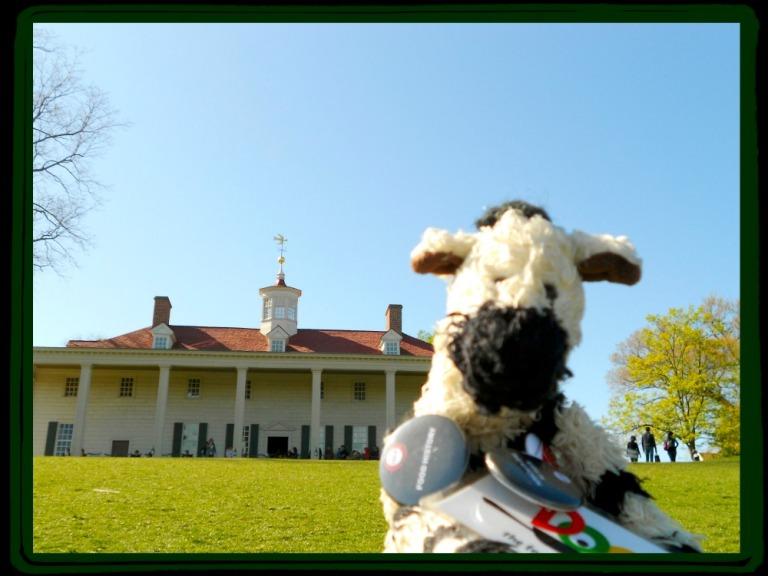 ZeBot Poses at Mount Vernon