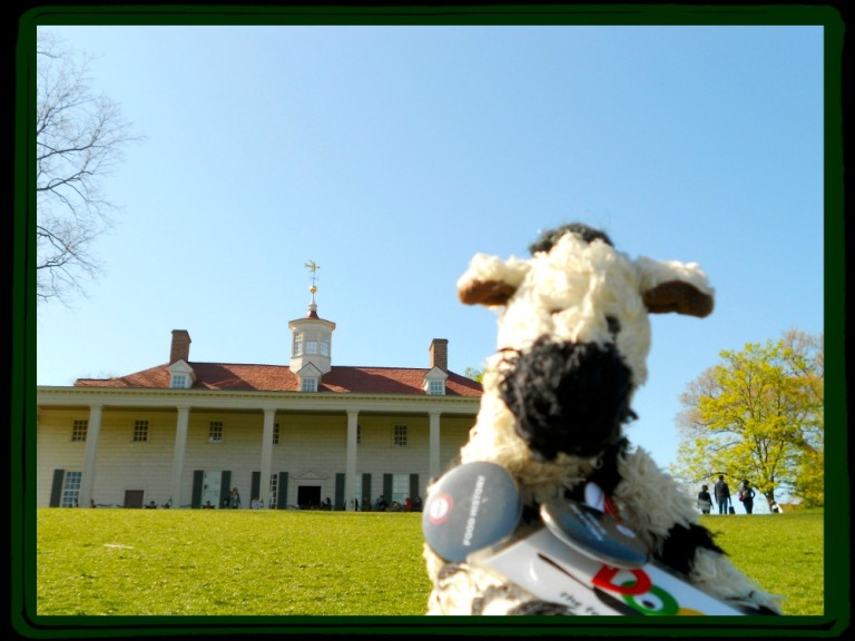 ZeBot Poses at Mount Vernon