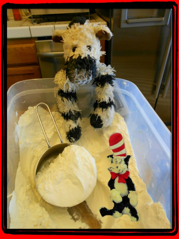 ZeBot in the Flour Bin with the Cat in the Hat